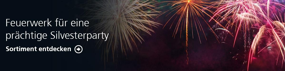 Feuerwerk für eine prächtige Silvesterparty