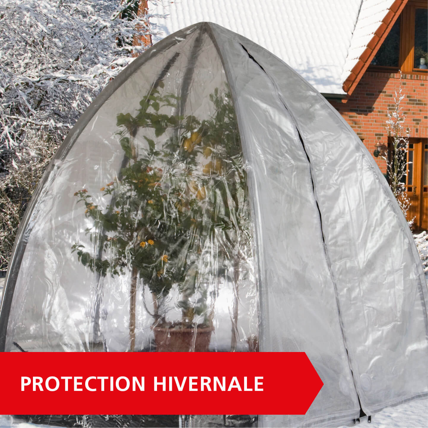 Protection hivernale