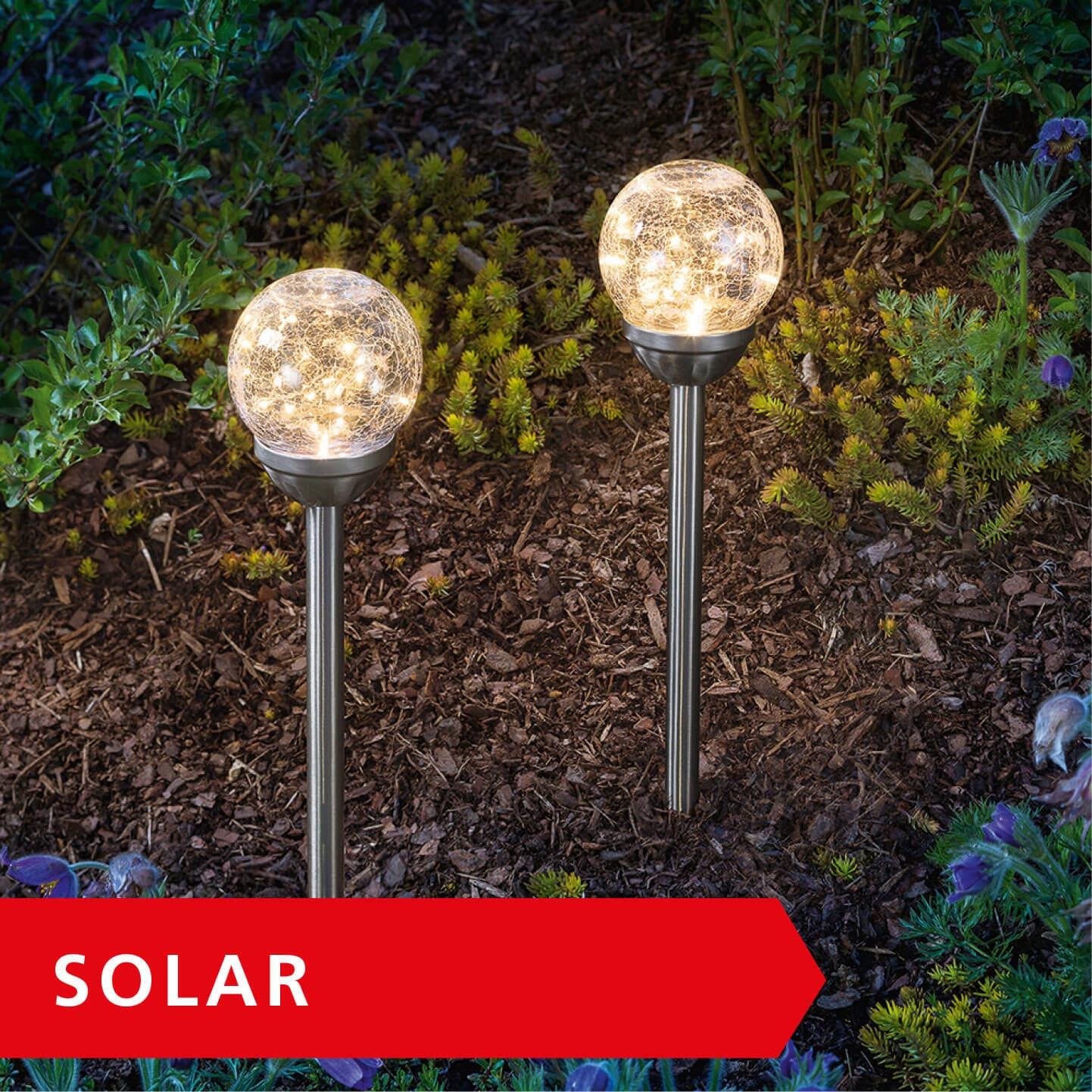 Solarbeleuchtung setzt in jedem Garten Akzente