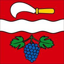 Gemeindefahne 8544 Rickenbach bei Winterthur Polyester 100x100 cm