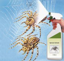 Spinnen-Schreck