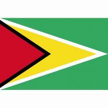 Länderfahne Frankreich Guyana