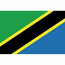 Länderfahne Tansania