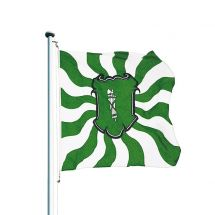 Kantonsfahne geflammt St. Gallen Superflag® 100x100 cm