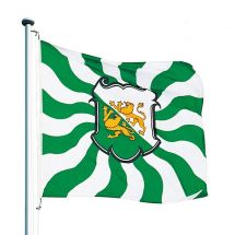 Kantonsfahne geflammt Thurgau Superflag® 150x150 cm