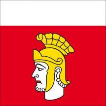 Gemeindefahne 1041 Poliez-Pittet