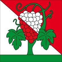 Gemeindefahne 1091 Bourg-en-Lavaux