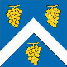 Gemeindefahne 1134 Chigny