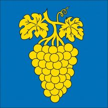 Gemeindefahne 1166 Perroy
