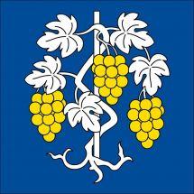 Gemeindefahne 1175 Lavigny