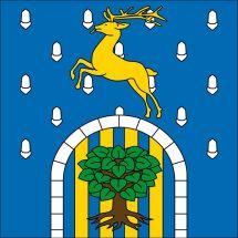 Gemeindefahne 1463 Rovray