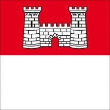Gemeindefahne 1537 Champtauroz