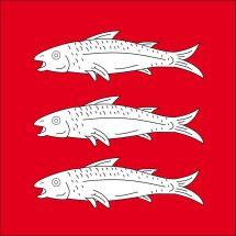 Gemeindefahne 1538 Treytorrens-Payern