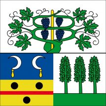 Gemeindefahne 1786 Bas-Vully