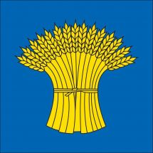 Gemeindefahne 2056 Dombresson