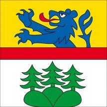 Gemeindefahne 3086 Wald