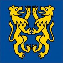 Gemeindefahne 3297 Leuzigen