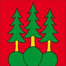 Gemeindefahne 3550 Langnau i. E.