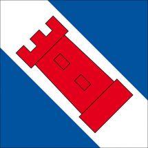 Gemeindefahne 3856 Brienzwiler