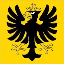 Gemeindefahne 3860 Meiringen