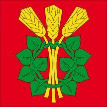 Gemeindefahne 4914 Roggwil BE