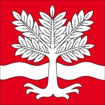 Gemeindefahne 4943 Oeschenbach