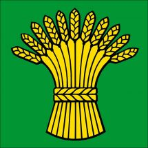 Gemeindefahne 5413 Birmenstorf AG