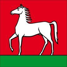 Gemeindefahne 5426 Lengnau AG