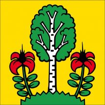 Gemeindefahne 5627 Besenbüren
