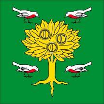 Gemeindefahne 6924 Sorengo