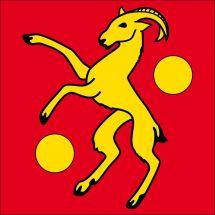 Gemeindefahne 6999 Astano