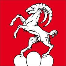 Gemeindefahne 8162 Steinmaur