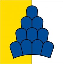 Drapeau commune 8268 Salenstein