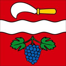 Gemeindefahne 8544 Rickenbach bei Winterthur