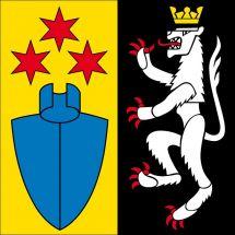 Gemeindefahne 8556 Wigoltingen