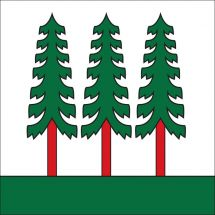 Gemeindefahne 8636 Wald ZH