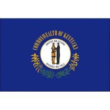 Fahne Bundesstaat Kentucky USA Polyester 75x50 cm