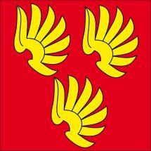 Gemeindefahne 3665 Wattenwil Superflag® 150x150 cm