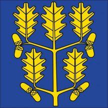 Gemeindefahne 8259 Rheinklingen