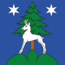 Gemeindefahne 1981 Mase VS