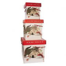 Geschenkbox «Hund», 3er Set