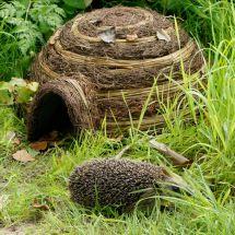 Maison pour hérissons «Wildlife Igloo»