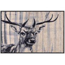 Fussmatte «Hirsch» 50x75 cm