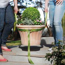 Tragegurt für Kübelpflanzen
