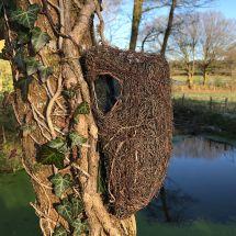 Baum- und Strauchnest