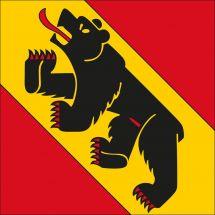 Kantonsfahne Bern Alternativ Superflag® 100x100 cm
