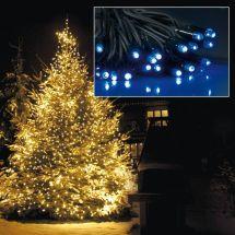 LED Basic-Systemlicht mit 240 blauen LED