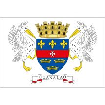 Fahne Gebiet St. Barthélemy Frankreich Polyester 100x70 cm