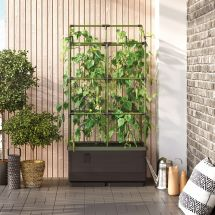 Mini-jardin «City Jungle»