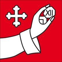 Gemeindefahne 9525 Lenggenwil